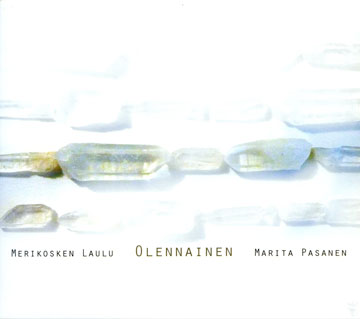 CD cover for Olennainen